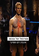 Watch Full Movie - האזמל של גונתר - אובדן דם מסיבי