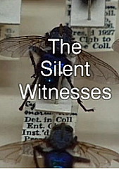 Watch Full Movie - Bodies of Evidence - The Silent Witnesses