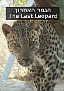 הנמר האחרון